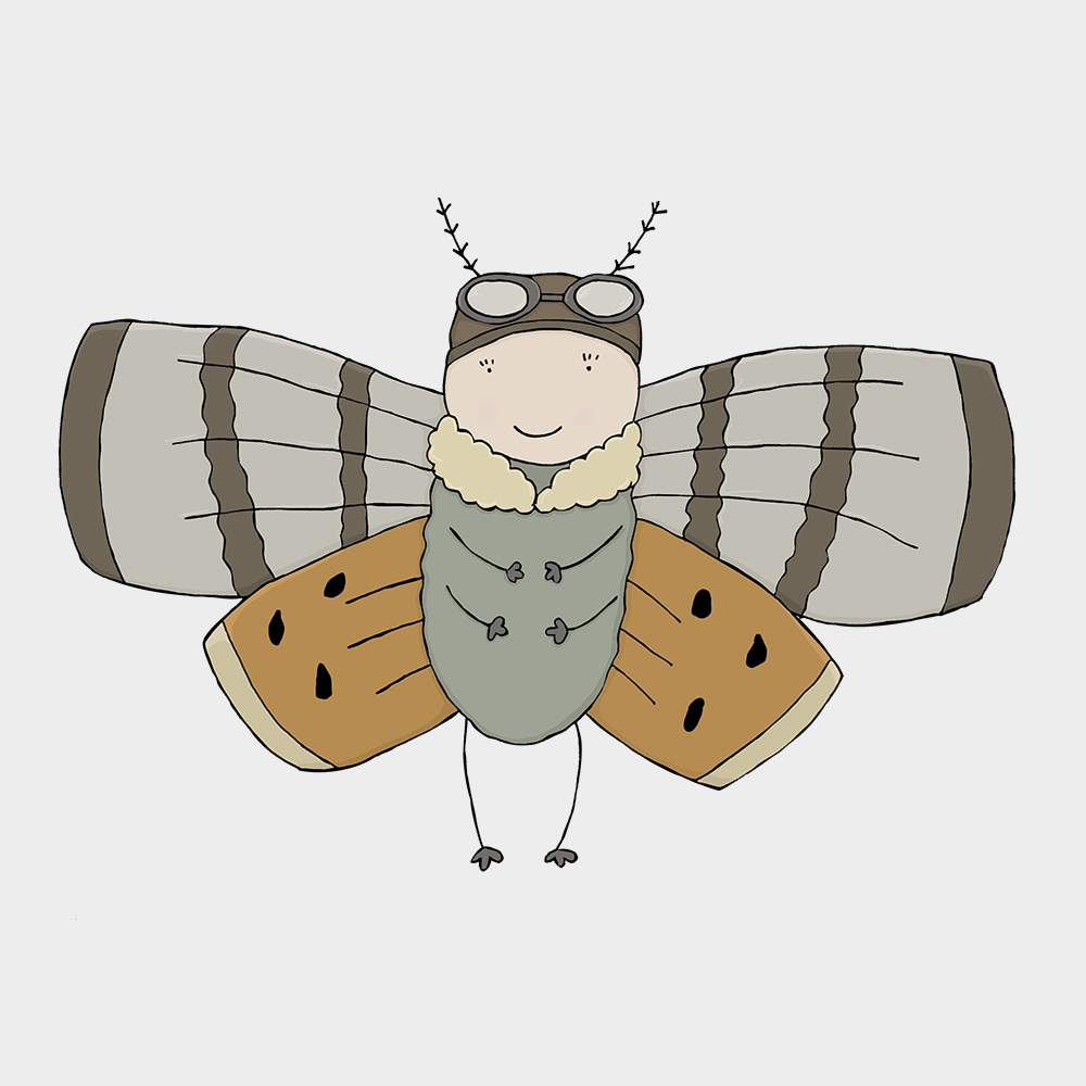 Hull Libraries illustration - Amy Johnson moth